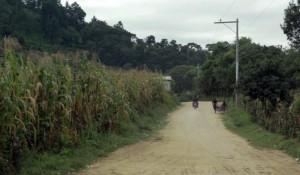 SMALL BUSINESS – GUATEMALA